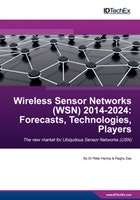Wireless Sensor Networks (WSN) 2014-2024: Forecasts, Technologies, Players