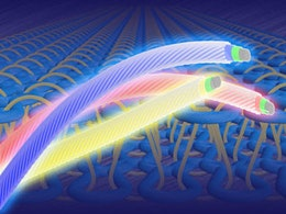 Flexible polymer threads set to light up clothing