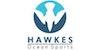 Hawkes Ocean Sports