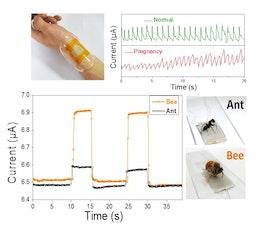 Ultrasensitive flexible and wearable bionic sensors