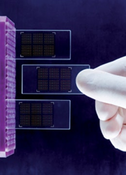 Nanotechnology may be key to solar energy and energy storage