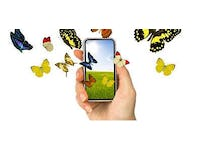 Peptide-based nanotechnology applied to smartphones and tablets