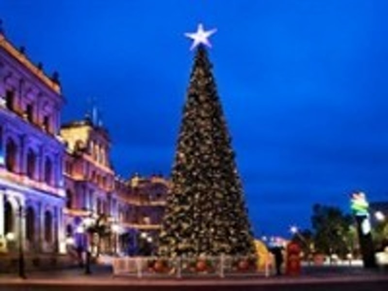 Largest solar powered Christmas tree   Off Grid Energy Independence