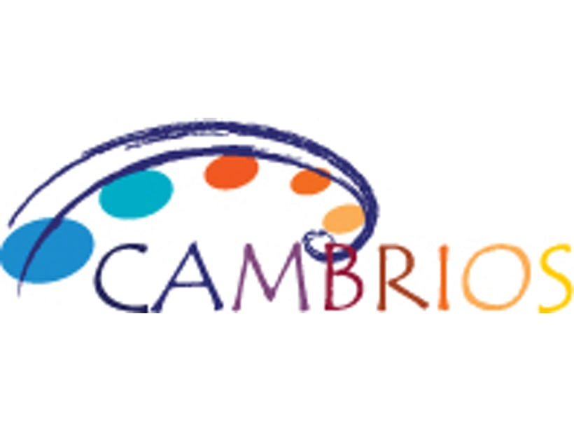 New transparent conductive films from Cambrios