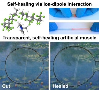 Self-healing, transparent, highly stretchable material