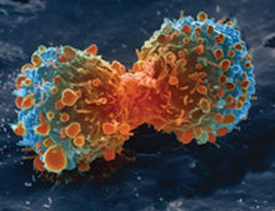 As immunotherapy gains popularity, CAR-Ts forge a path of their own