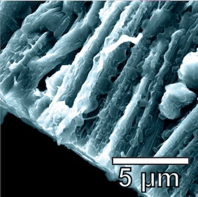Graphene-nanotube hybrid boosts lithium metal batteries