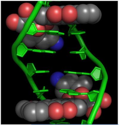 Nanoparticles breathe new life into doxorubicin cancer treatment