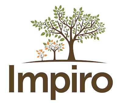 Impiro invests in solar market growth in Indonesia