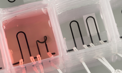 3D-printed organ-on-a-chip with integrated sensing