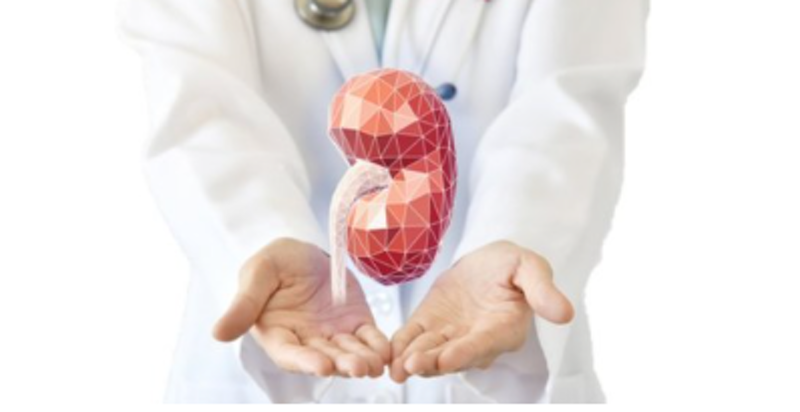 Funding to create human organs with 3D printing   Global ...