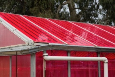 Solar greenhouses generate electricity and grow crops