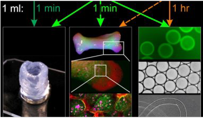 3D printing of living cells