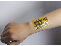 New malleable electronic skin: self-healable, recyclable