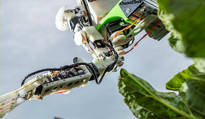 Harvesting robots could revolutionise farming practices