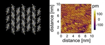 Cell membrane inspires new ultrathin electronic film