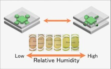 Functional films made of environmentally friendly clay minerals, dyes