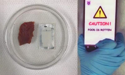 Ultimate smell test: Device sends rotten food warning to smartphone