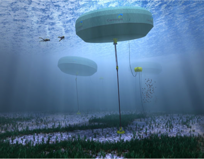 Collaboration to develop CETO wave energy technology