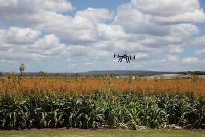 Monsanto case reaffirms that robotics is the future of agrochemicals