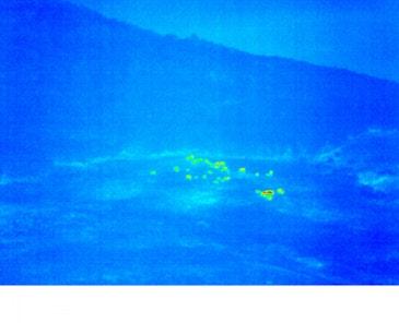 英特尔推进无人机安全进入美国领空