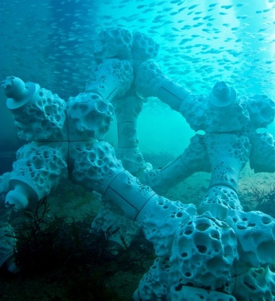 World's largest 3-D printed reef installed at Summer Island Maldives