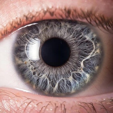 Facility to develop 3D printed corneas