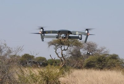 How drones and sirens can help save the rhino