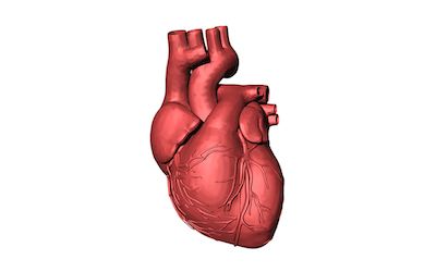 3D printing new parts for our broken hearts