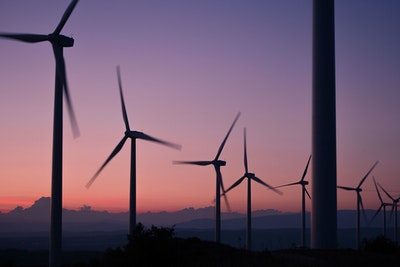 Renewables cover nearly 43 percent of electricity consumption