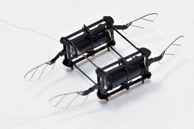 First in Flight: RoboBee Powered by Soft Muscles