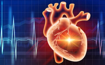 Cardiovascular Disease Technology Market Will Exceed $40Bn by 2030