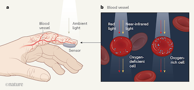 Wearable Graphene Sensors Use Ambient Light to Monitor Health