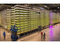 Can Vertical Farming Revolutionise Global Agriculture?