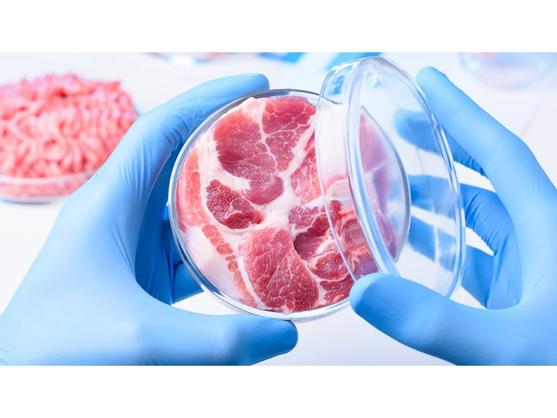 Five Things IDTechEx Learned From the Cultured Meat Symposium 2020 |  IDTechEx Research Article